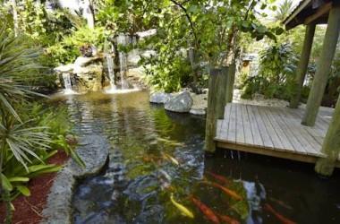 Embassy Suites Hotel Ft Lauderdale 17th Street atrium koi-pond