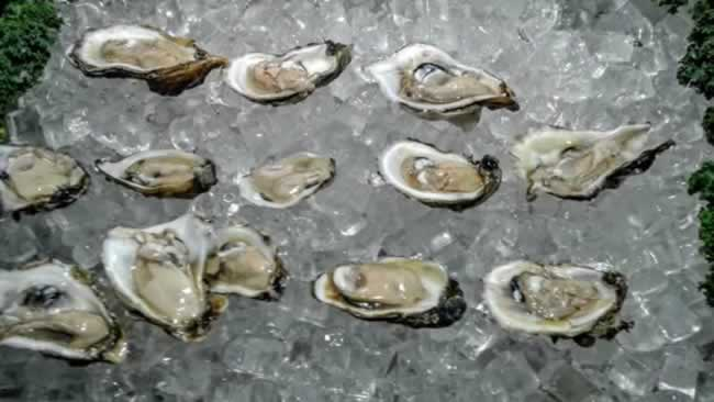 Nabu all you can eat oysters in Fort Lauderdale